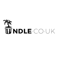 indle.co music